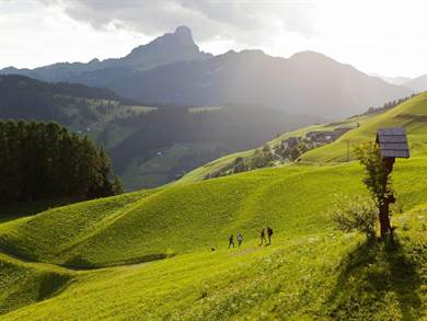 Esperienze Vere in Trentino